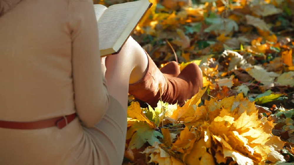 Attractive Woman reading book in Autumn
