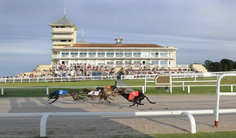 TOWCESTER - a view of the action. (A5 race won by trap 2 Skyline Sully). 18th July 2015.