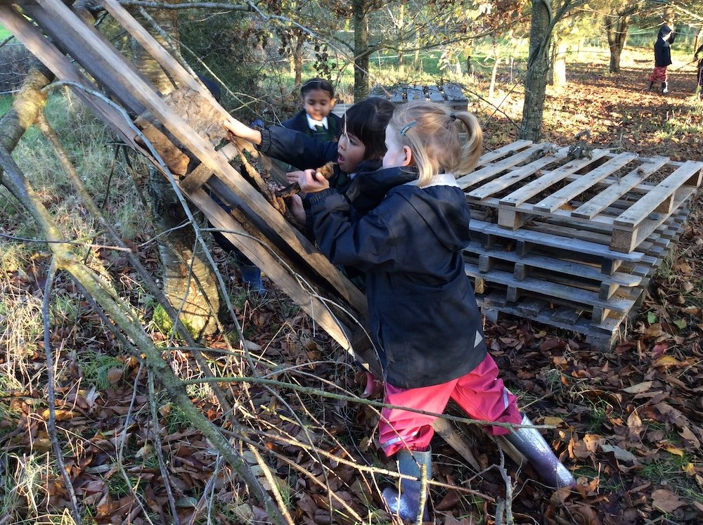 forest school spratton hall pre prep