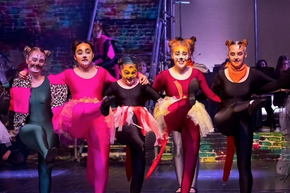 NHS Cats the musical